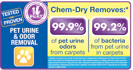 Old Fort Chem-Dry removes 99.9% of pet urine odors from carpet in Fort Smith and 99.2% of bacteria from pet urine in carpets in Fort Smith AR